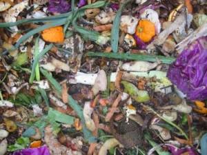 compost13