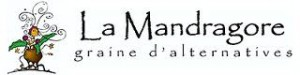 mandragore1